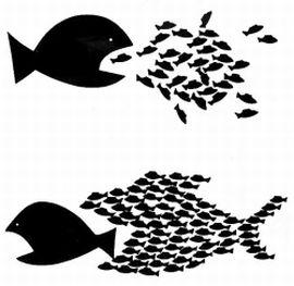 SolidarityFish