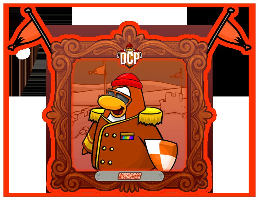 DCP portrait Meerrkat